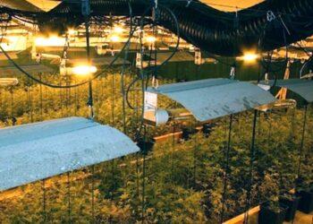 La Guardia Civil interviene tres toneladas de hachis en Llinars del ValleS